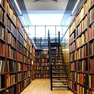 Библиотеки Красногородского