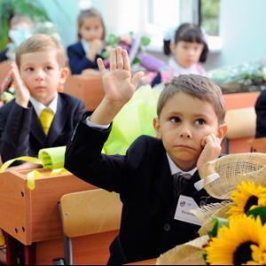 Школы Красногородского
